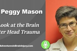 Podcast 9 – A Look Inside the Brain After Head Trauma